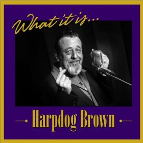 "Harpdog Brown ""What it is"""